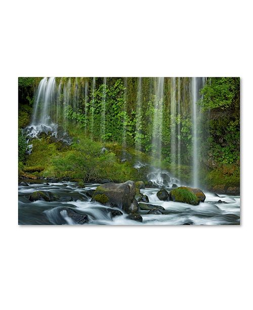 "Trademark Global Mike Jones Photo 'Mossbrae Falls' Canvas Art - 24"" x 16"" x 2"""