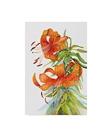 "Joanne Porter 'Tiger Lilies' Canvas Art - 24"" x 16"" x 2"""