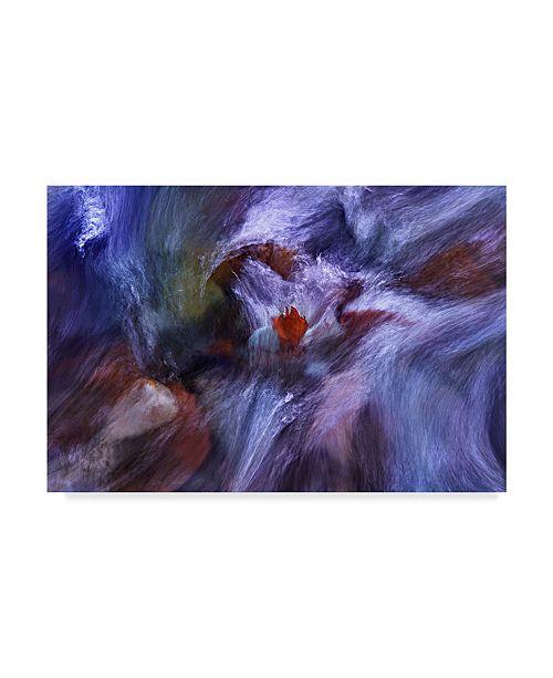 "Trademark Global Nader Farid 'Flow Abstract' Canvas Art - 47"" x 2"" x 30"""