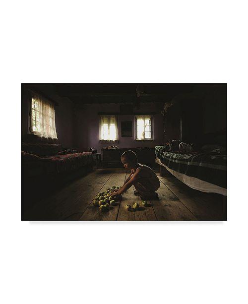 "Trademark Global Vlad Dumitrescu 'Merele Lui' Canvas Art - 19"" x 2"" x 12"""
