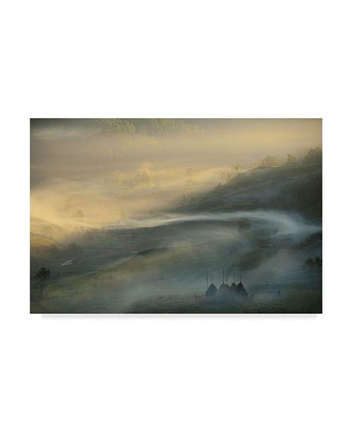 "Trademark Global Vlad Dumitrescu 'Ganduri' Canvas Art - 32"" x 2"" x 22"""