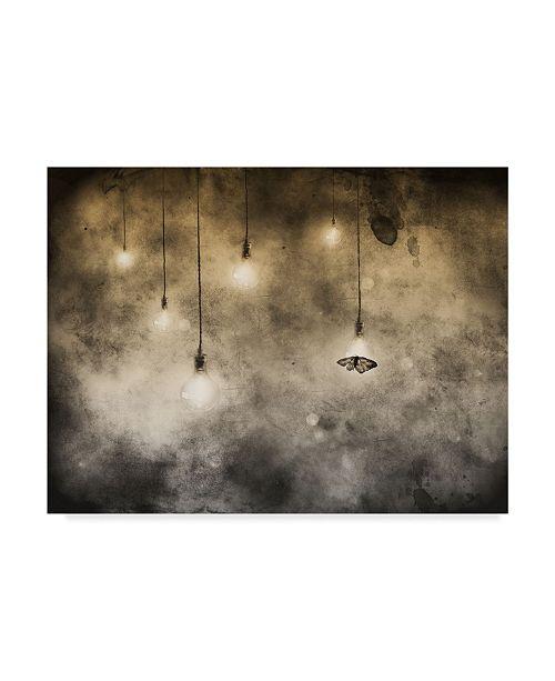 "Trademark Global Jeffrey Hummel 'Attraction' Canvas Art - 19"" x 2"" x 14"""