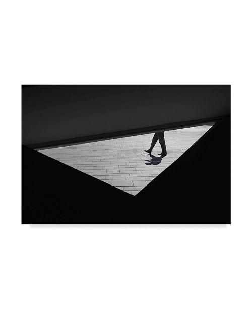 "Trademark Global Sara Elbar 'Walking In A Triangle' Canvas Art - 32"" x 2"" x 22"""