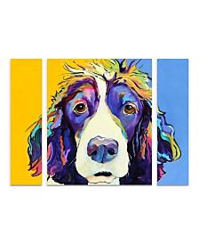 """Pat Saunders-White 'Sadie' Multi Panel Art Set Large 3 Piece - 44"""" x 34"""" x 2"""""""