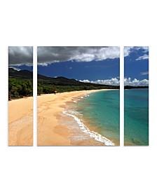 "Pierre Leclerc 'Makena Maui' Multi Panel Art Set Large 3 Piece - 44"" x 34"" x 2"""