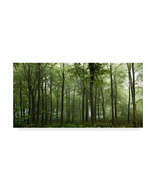"Leif Londal 'Forest Greens' Canvas Art - 19"" x 10"" x 2"""