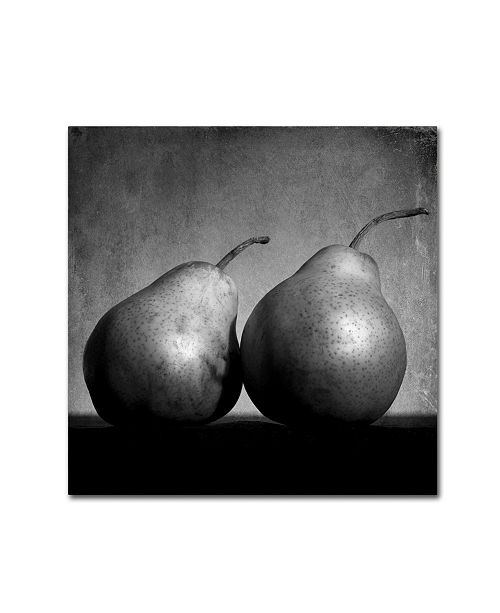 "Trademark Global Moises Levy 'Coqueteo Peras' Canvas Art - 35"" x 35"" x 2"""