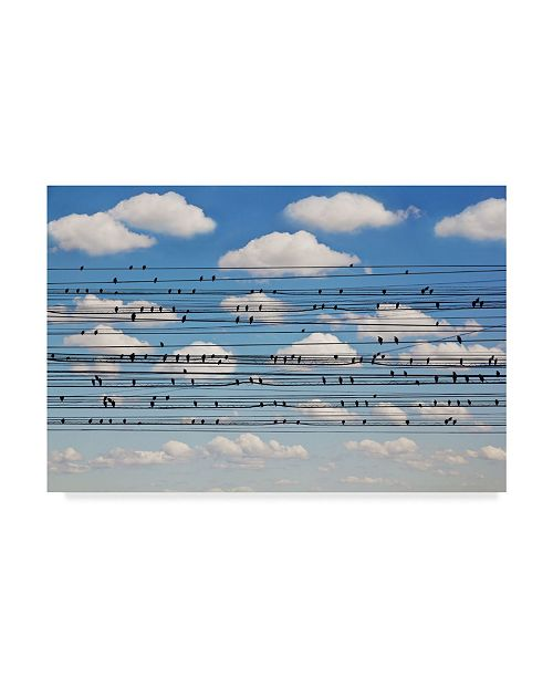 "Trademark Global Jared Lim 'Concert For Birds' Canvas Art - 32"" x 22"" x 2"""