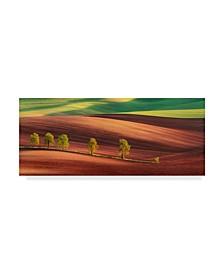 "Jan Smid 'Odyssey Of An Avenue' Canvas Art - 32"" x 14"" x 2"""