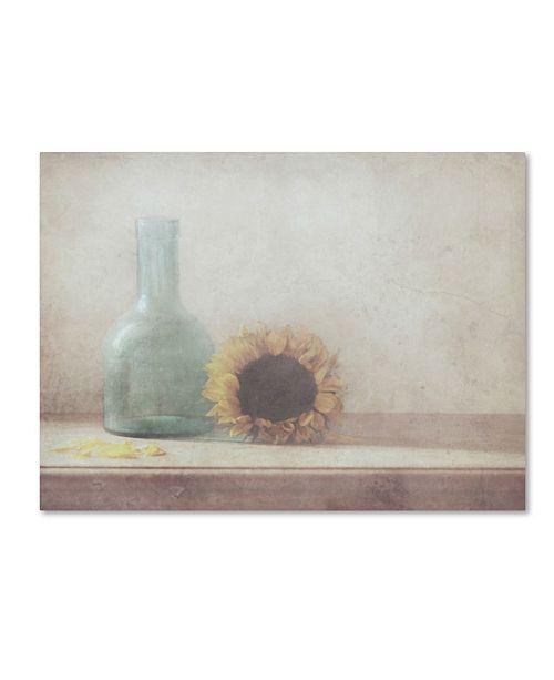 "Trademark Global Delphine Devos 'Sunflower' Canvas Art - 32"" x 24"" x 2"""