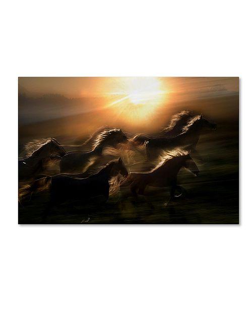 "Trademark Global Milan Malovrh 'Morning Gallop' Canvas Art - 32"" x 22"" x 2"""