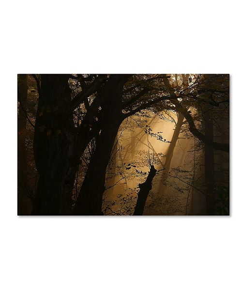 "Trademark Innovations Norbert Maier 'Colors Of Fall' Canvas Art - 47"" x 30"" x 2"""