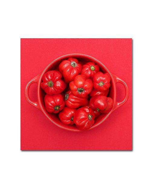 """Trademark Global Sarah Saratonina 'Red Cubed' Canvas Art - 14"""" x 14"""" x 2"""""""