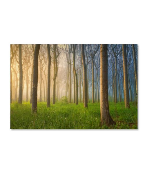 "Trademark Global Jingshu Zhu 'Misty Morning' Canvas Art - 19"" x 12"" x 2"""