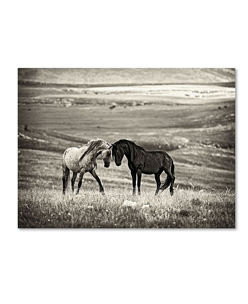 "Trademark Global Vedran Vidak 'Close Encounter' Canvas Art - 32"" x 24"" x 2"""