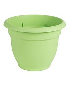 "Ariana 8"" Self Watering Planter"