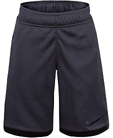 Nike Toddler Boys Trophy Relaxed-Fit Dri-FIT Mesh Shorts
