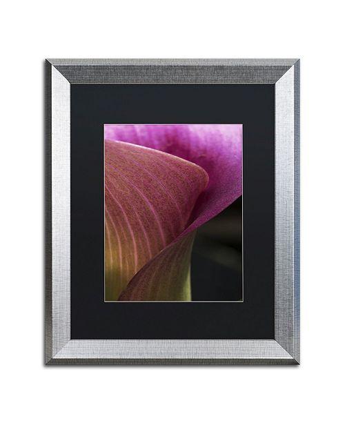 """Trademark Global Kurt Shaffer 'Part of a Calla Lily' Matted Framed Art - 16"""" x 20"""""""