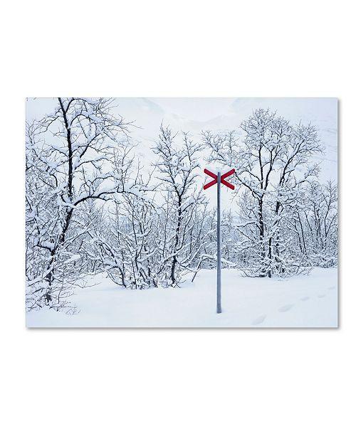"Trademark Global Hugh Evans 'Red Cross' Canvas Art - 14"" x 19"""