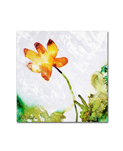 "Trademark Global Jennifer Redstreake 'Golden Bloom' Canvas Art - 14"" x 14"""