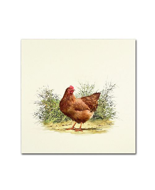 "Trademark Global The Macneil Studio 'Hen' Canvas Art - 14"" x 14"""