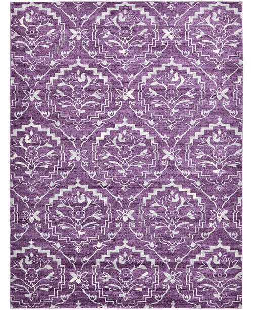 Bridgeport Home Felipe Fel1 Purple 9' x 12' Area Rug
