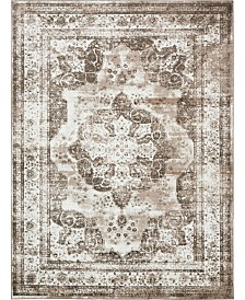 Bridgeport Home Basha Bas2 Light Brown 9' x 12' Area Rug