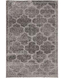 Filigree Shag Fil2 Dark Gray 4' x 6' Area Rug