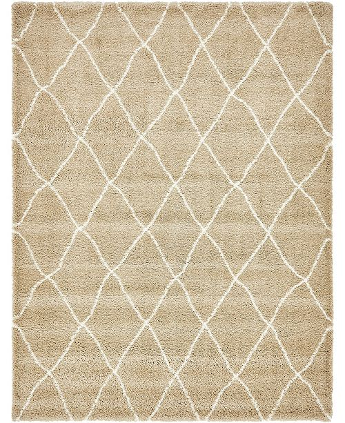 Bridgeport Home Fazil Shag Faz3 Taupe 9' x 12' Area Rug