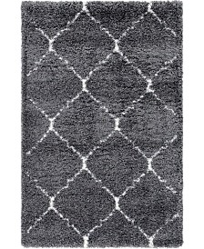 Bridgeport Home Fazil Shag Faz5 Gray 4' x 6' Area Rug