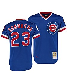 Big Boys Ryne Sandberg Chicago Cubs Mesh V-Neck Player Jersey