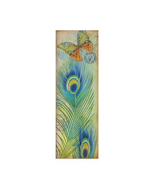 """Trademark Global Jean Plout 'Peacock Feather' Canvas Art - 16"""" x 47"""""""