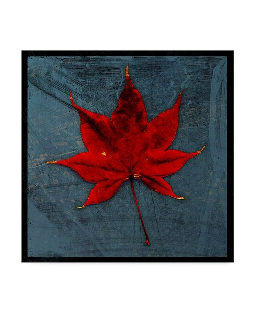 "Trademark Global John W. Golden 'Japanese Maple' Canvas Art - 18"" x 18"""