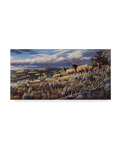 "Trademark Global Wilhelm Goebel 'King Of The Hill Elk' Canvas Art - 16"" x 32"""