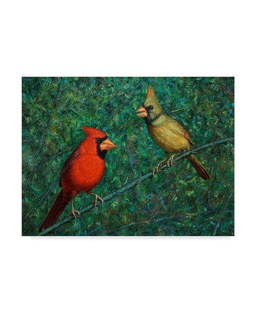 "Trademark Global James W. Johnson 'Cardinal Couple' Canvas Art - 19"" x 14"""