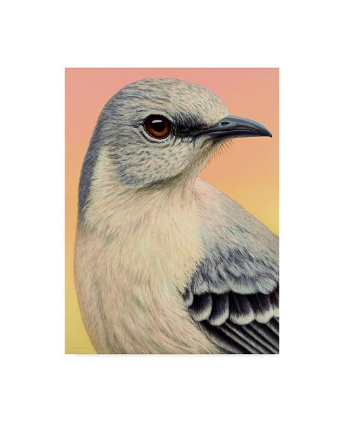 "Trademark Global James W. Johnson 'Mocking Bird' Canvas Art - 18"" x 24"""