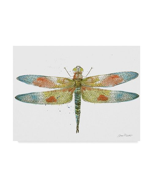 """Trademark Global Jean Plout 'Dragonfly Bliss 7' Canvas Art - 19"""" x 14"""""""