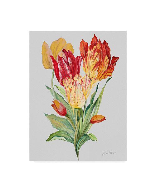 "Trademark Global Jean Plout 'Botanicals 12' Canvas Art - 18"" x 24"""