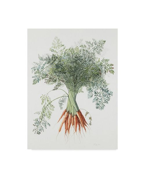 "Trademark Global Margaret Ann Eden 'Carrots, 1995' Canvas Art - 24"" x 32"""