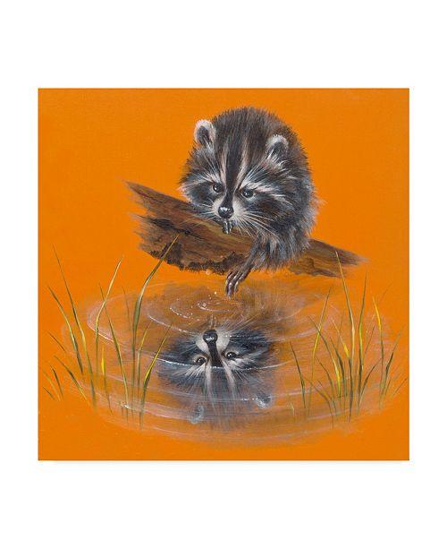 "Trademark Global Peggy Harris 'Reflective Racoon' Canvas Art - 18"" x 18"""