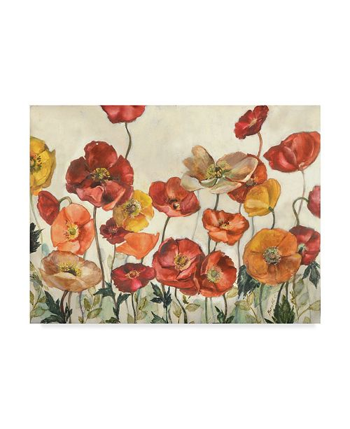 "Trademark Global Marietta Cohen Art And Design 'Field Of Poppies Red' Canvas Art - 19"" x 14"""