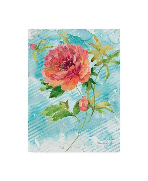"""Trademark Global Marietta Cohen Art And Design 'Spring Garden Texture 1' Canvas Art - 24"""" x 32"""""""