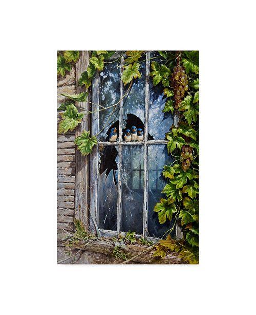 """Trademark Global Michael Jackson 'Birds In Broken Window' Canvas Art - 16"""" x 24"""""""