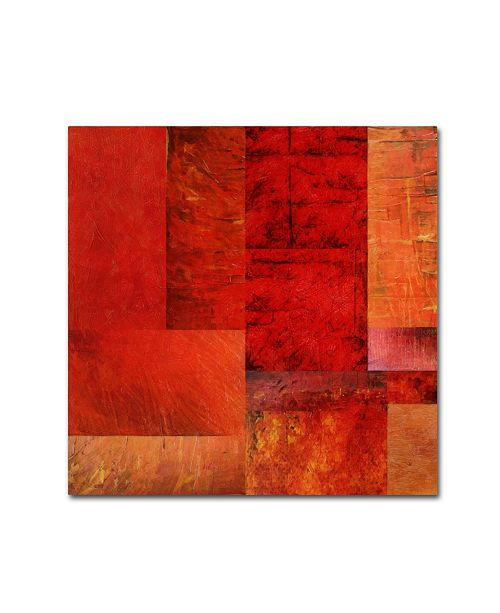 """Trademark Global Michelle Calkins 'Essence of Red' Canvas Art - 24"""" x 24"""""""