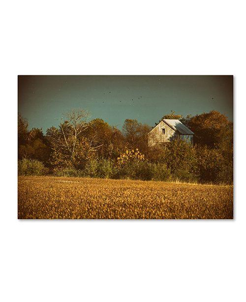 "Trademark Global PIPA Fine Art 'Abandoned Barn In The Trees' Canvas Art - 30"" x 47"""