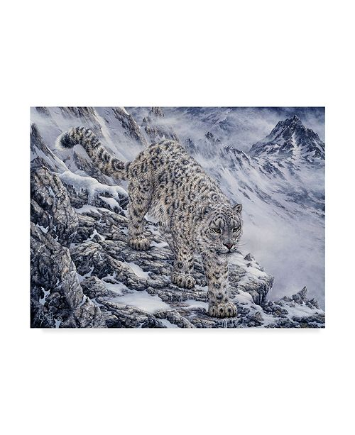 "Trademark Global Jeff Tift 'Snow Leopard' Canvas Art - 35"" x 47"""