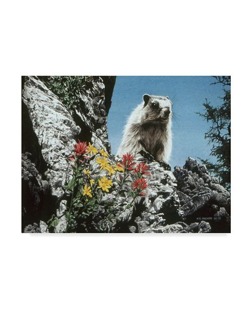 """Trademark Global Ron Parker 'Young Marmot' Canvas Art - 24"""" x 32"""""""