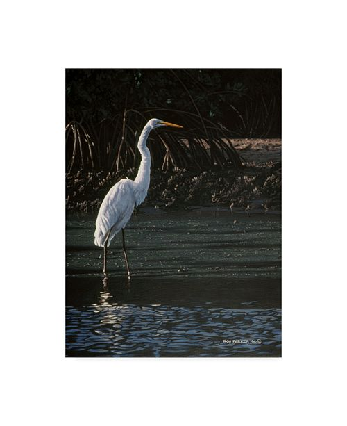 "Trademark Global Ron Parker 'Great Egret' Canvas Art - 35"" x 47"""