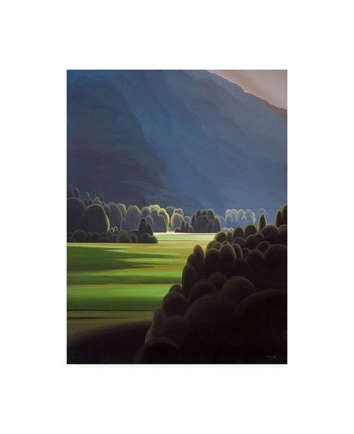 "Trademark Global Ron Parker 'St. Marts Valley' Canvas Art - 35"" x 47"""
