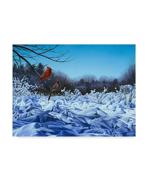 "Trademark Global Rusty Frentner 'After The Storm' Canvas Art - 24"" x 32"""